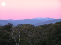 Photo: Australian Alps collection