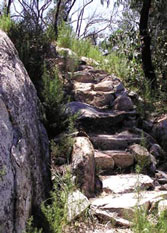 Path reconstruction between Namadgi and Mount Tennent