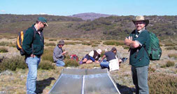Climate change research on the Bogong High Plains. Climate change is one of the key areas of focus under the new Alps Strategic Plan.