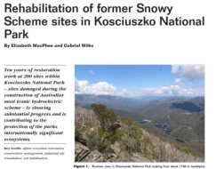 Rehabilitation of former Snowy Scheme sites in KNP image